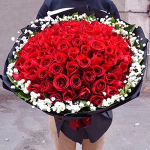 19朵玫瑰花束礼盒