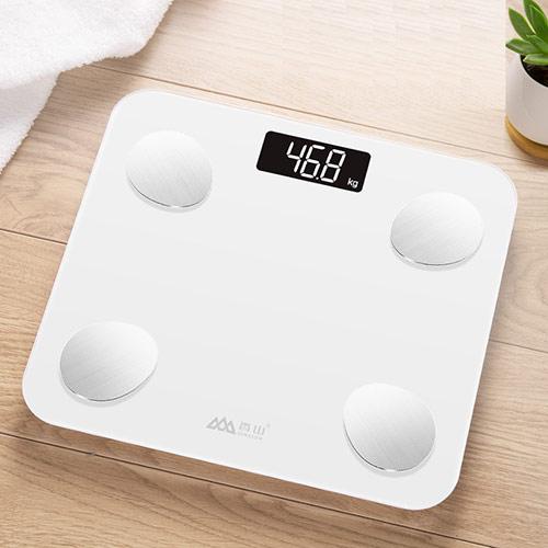 多功能电子脂肪秤