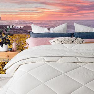 Dreamland双人羊毛电热毯