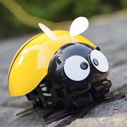 智能瓢虫玩具机器人